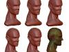 Niveles de subdivisión de la cabeza