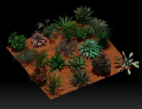 """IMM Brush """"Plantas"""" gratuito"""