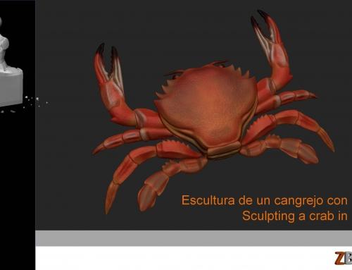 Sesión de escultura: Cangrejo de mar.
